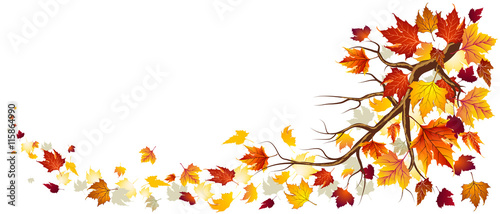 Obraz Branch With Autumn Leaves In Falling