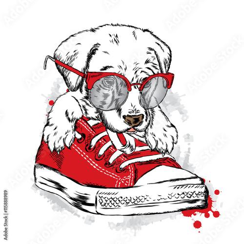 sliczny-szczeniaka-obsiadanie-w-gym-butach-ilustracja-wektorowa-dla-karty-z-pozdrowieniami-plakatu-lub-wydrukowac-na-ubrania