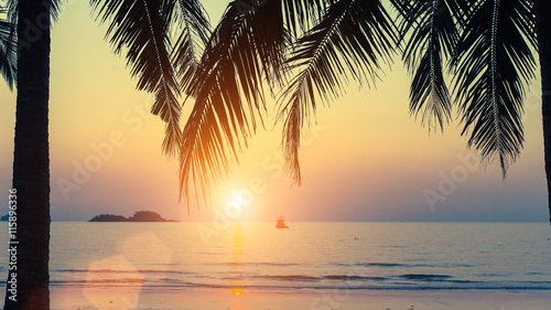 Foto op Aluminium Oranje Sunset on the tropical coast, through the palm leaves.