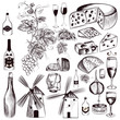 Vector set of vintage decorative elements vine and winemaking, c