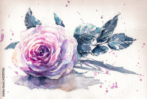 Pink rose watercolor hand-painted,retro style.