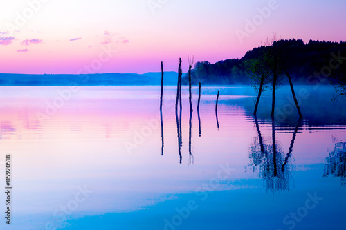 Beautiful landscape with a lake and mountains in the background and trees in the water. Blue and purple color tone.