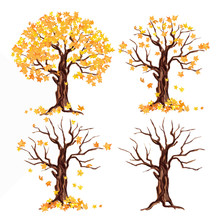 Weatercolor Autumn Tree Set On...