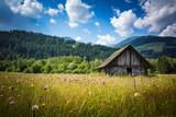 Fototapeta Sypialnia - Old wooden farm house in the Austrian countryside