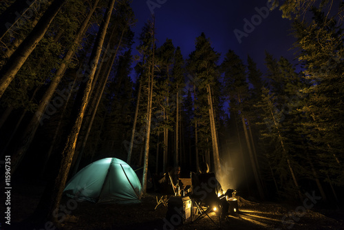In de dag Kamperen Two people camping in the forest with a fire