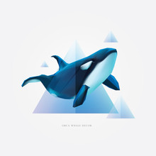 Blue And Purple Colored Geometric Triangle Shapes With Transparent Effect And Orca Killer Whale As Decorative Element
