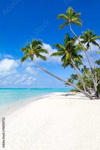 Motiv-Rollo Basic - Urlaub am Strand