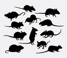 Mouse And Rat Mammal Animal Silhouette. Good Use For Symbol, Logo, Web Icon, Mascot, Sticker Design, Or Any Design You Want.