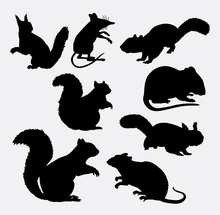 Squirrel And Mouse Mammal Animal Silhouette. Good Use For Symbol, Logo, Web Icon, Avatar, Mascot, Sign, Sticker Design, Game Element, Or Any Design You Want. Easy To Use.