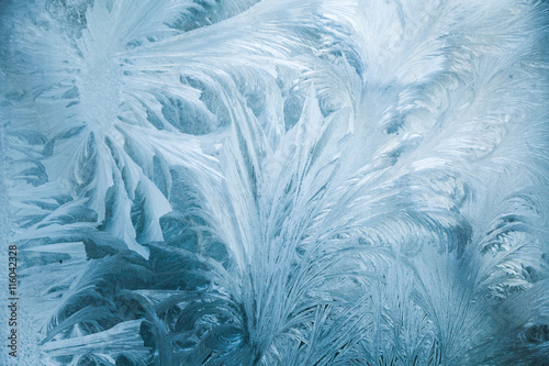 Fotografie, Obraz  Abstract frost