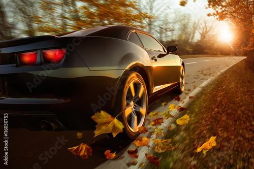 fototapeta na drzwi i meble Auto im Herbst