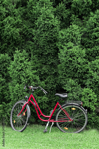 Fotobehang Fiets vintage bike stands outdoors in summer day