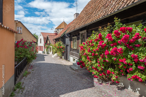 Fotografía  Medieval alley in the historic Hanse town Visby on Swedish Baltic sea island Got