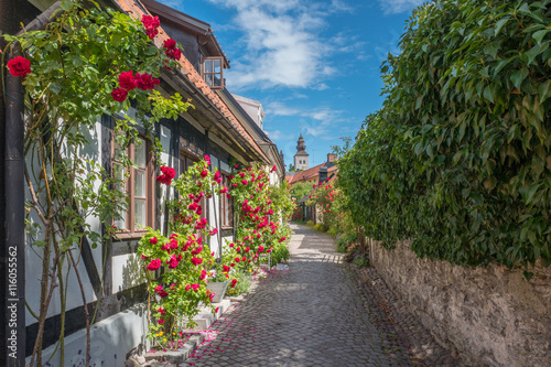 Poster Scandinavie Medieval alley in the historic Hanse town Visby on Swedish Baltic sea island Gotland