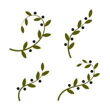 Isolated Olive Branch Vector Logo Set. Oil Logotypes Collection. Peace Day.