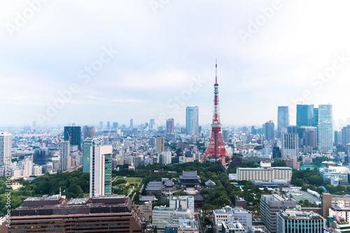 Printed kitchen splashbacks Tokyo cityscape and skyline of towntown near tokyo tower in cloud sky