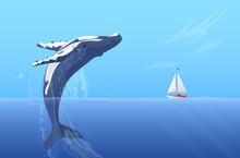 Jump Humpback Big Huge Whale N...