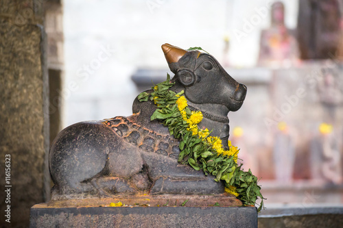 Statue of Nandi Bull with flowers in indian temple. Side view.