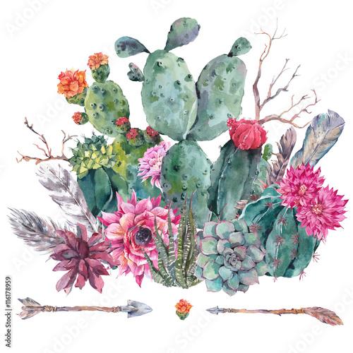 Akwarela kaktus, soczyste, kwiaty
