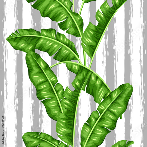 seamless-pattern-with-banana-leaves-image