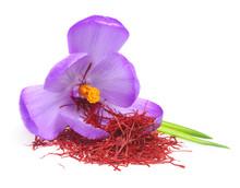 Flower Crocus And Dried Saffro...