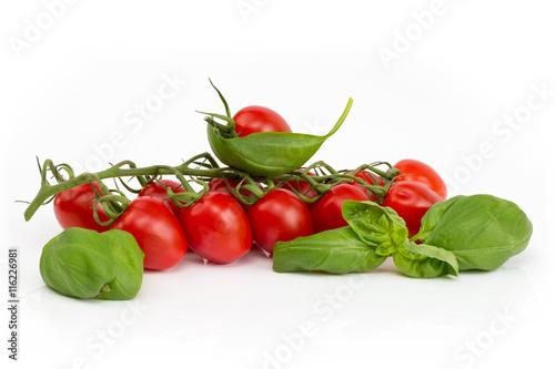 Canvas Prints Fresh vegetables Tomatenrispe mit Basilikum auf weißem Hintergrund isoliert