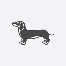Dachshund Vector Icon In Black Simple Style For Web