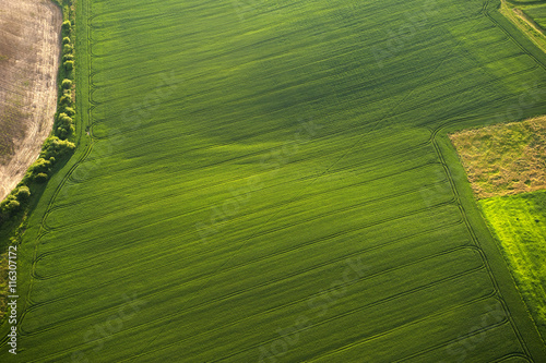 Foto op Plexiglas Groene Aerial view on green and yellow parts of fields and countryside