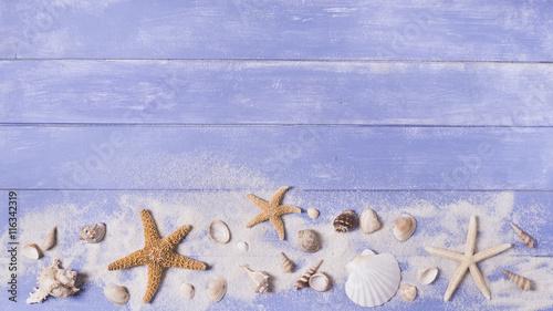 Cuadros en Lienzo sfondo mare con stelle di mare e conchiglie