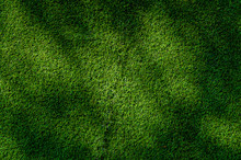 Abstract  Top View Green Color Of Artificial Grass Background Texture