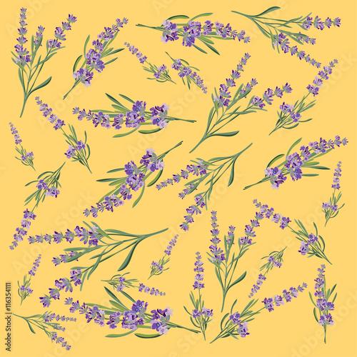 Background with flower frame Lavender for Invitation card - 116354111