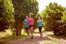 Three Joggers On A Running Trail