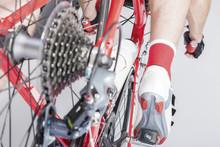 Sport Cycling Concepts. Back V...