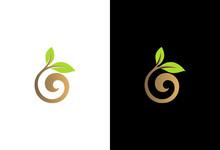 Seed Swirl Plant Organic Logo
