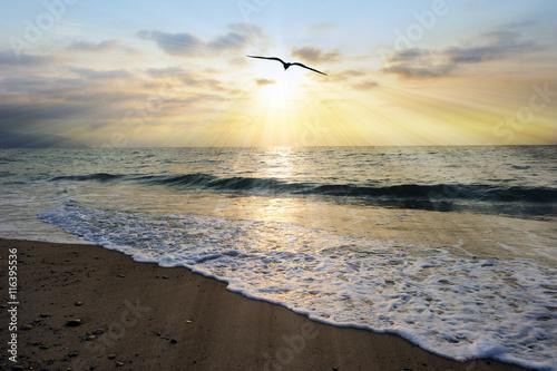 Foto Ocean Sunset Rays
