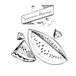 Vector set of summer harvest. Decorated with banner and blots. Watwrmelon slices.