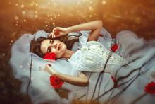 Lies Sleeping Beauty