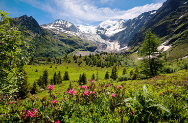 Amazing panorama of French Apls, part of famous trekk - Tour du Mont Blanc