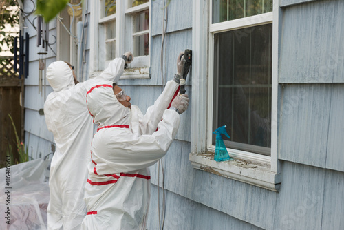 Photo Lead Removal Workers