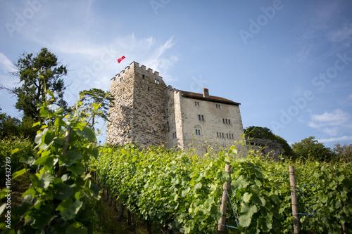 Medieval castle of Habsburg, the original seat of the Habsburg family, Aargau, Switzerland #116432789