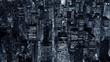 Aerial establishment shot of city skyline metropolis.