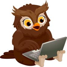 Owl Laptop