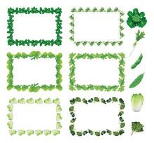 野菜フレーム(四角・ブロッコリー、大根、枝豆、ゴーヤ、白菜、ホウレンソウ)