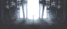 Man Steht Im Lichtschein Im Wald