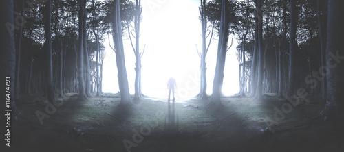 Fotografie, Obraz  Man Steht im Lichtschein im Wald