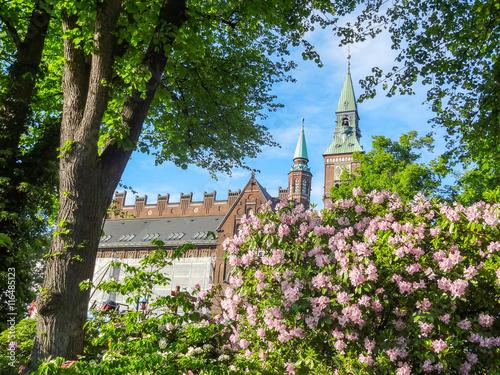 Photo  idyllic city view of Copenhagen