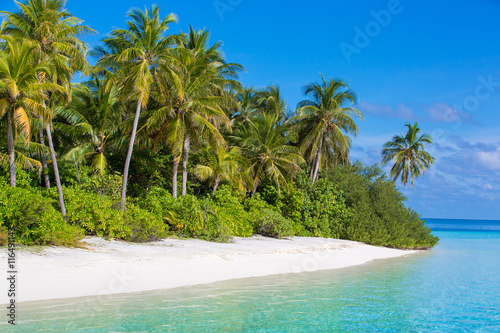 Photo Stands Turquoise Wild Island