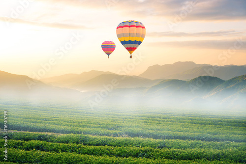 Balloon with landscape view and sunrise time