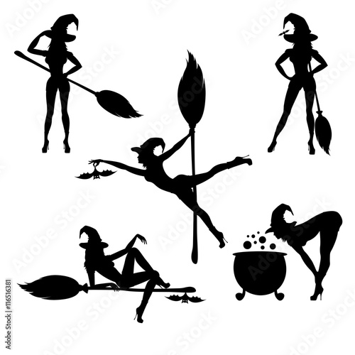 Canvas-taulu witch silhouette