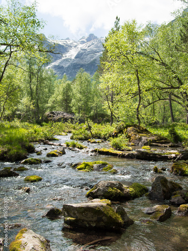 Fototapety, obrazy: Landscape pure stream with rocks in the moss on the background of the high mountains